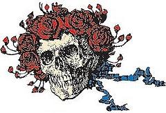grateful+dead+skull